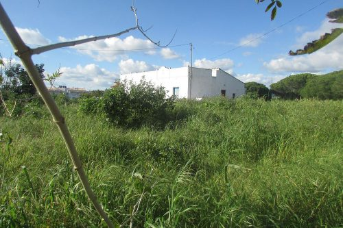 Plot For Sale – Almancil