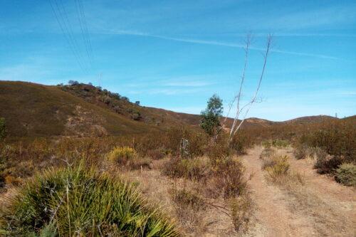 Terreno Rústico Para Venda – Mexilhoeira Grande