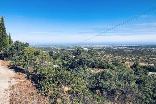 Terreno para Construção com Projeto Para Venda – Santa Barbara de Nexe